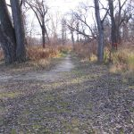 Nature Trail Near Dock Area Looking Southh-2016